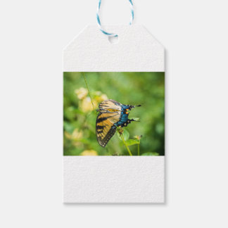 Beautiful Yellow Butterfly Pack Of Gift Tags