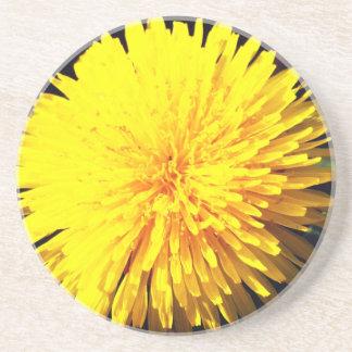 Beautiful Yellow Dandelion Coaster