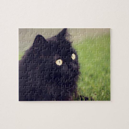 Beautiful Yellow Eyed Black Cat Jigsaw Puzzle