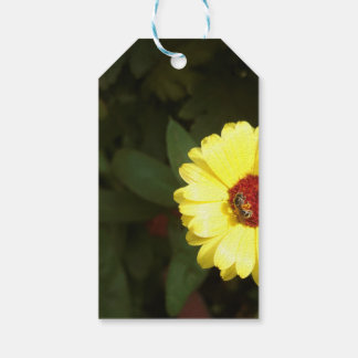 Beautiful yellow flower with small bee pack of gift tags