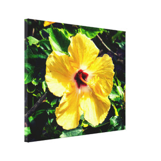 Beautiful Yellow&Red Exotic Hibiscus Canvas Print