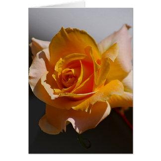 Beautiful yellow rose card
