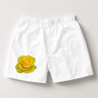 Beautiful Yellow Rose Closeup Isolated Boxers