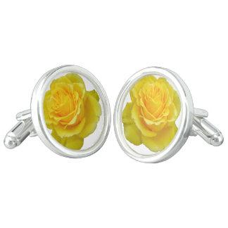 Beautiful Yellow Rose Closeup Isolated Cufflinks