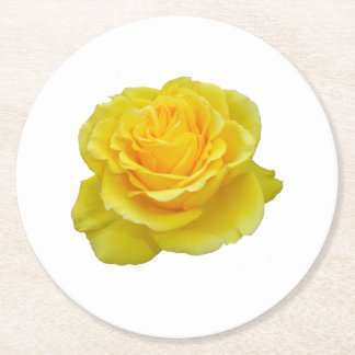 Beautiful Yellow Rose Closeup Isolated Round Paper Coaster