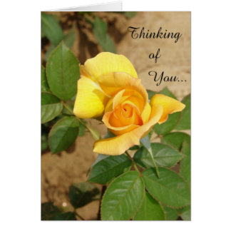 Beautiful Yellow Rose Thinking of You Birthdday Card