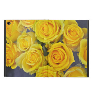 Beautiful yellow roses powis iPad air 2 case