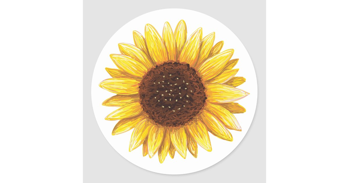 Beautiful Yellow Sunflower Drawing Stickers Zazzle Ca