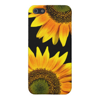 Beautiful yellow sunflowers cover for iPhone 5/5S