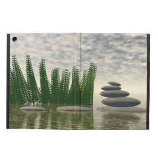 Beautiful zen landscape in the middle of aquatic iPad air case