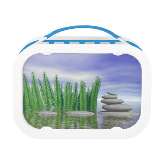 Beautiful zen landscape in the middle of aquatic lunch box