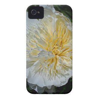 Beautifully Arrogant iPhone 4 Case-Mate Case