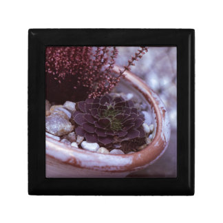 Beautilful 35mm FIlm Photo Trinket Boxes