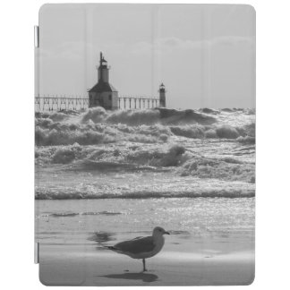 Beauty And Force Grayscale iPad Cover