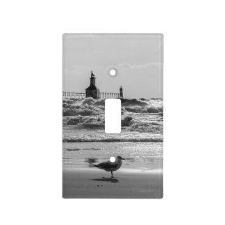 Beauty And Force Grayscale Light Switch Cover
