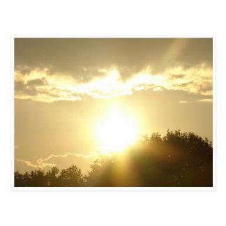 Beauty In A Sunrise Postcard
