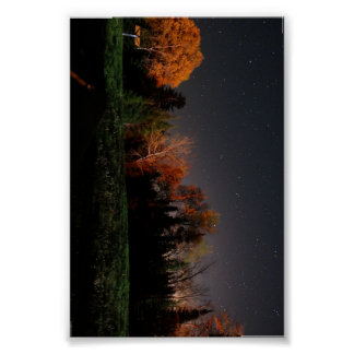 Beauty in Darkness Poster