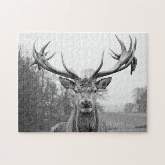 Beauty in nature jigsaw puzzle