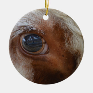Beauty In The Eye Of The Beholder Cow Ceramic Ornament