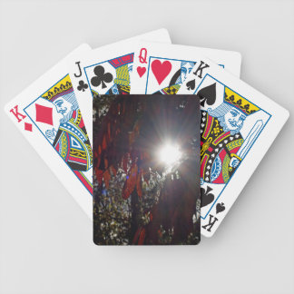 Beauty in the Sumac Bicycle Playing Cards