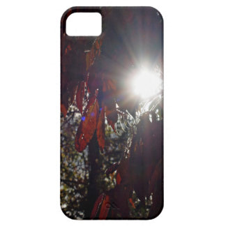 Beauty in the Sumac Case For The iPhone 5
