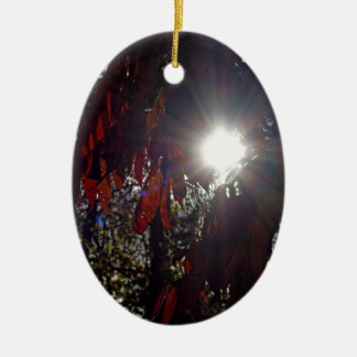 Beauty in the Sumac Ceramic Ornament