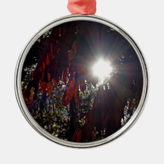 Beauty in the Sumac Metal Ornament