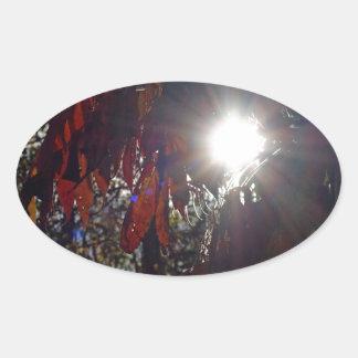 Beauty in the Sumac Oval Sticker