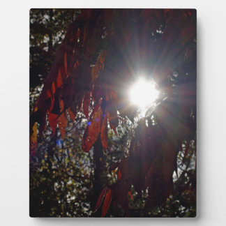 Beauty in the Sumac Plaque