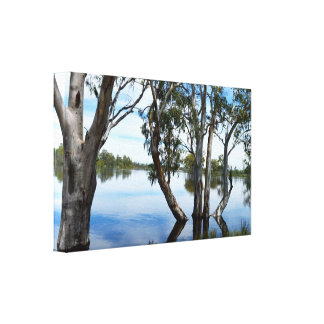 Beauty Of A Gum Tree Relfections On River Murray, Canvas Print