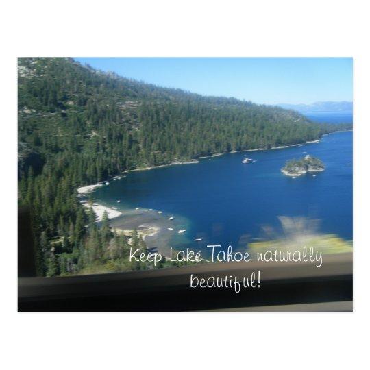 Beauty of Lake Tahoe Postcard
