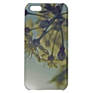Beauty Of Nature iPhone 5C Covers