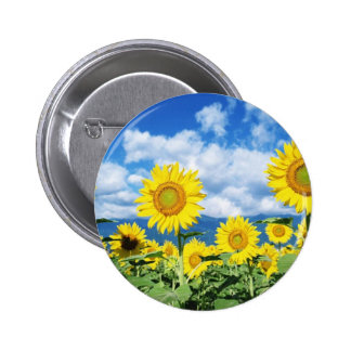 Beaux tournesols badge