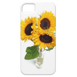 Beaux tournesols dans la couverture de cas de l'iP Étuis iPhone 5