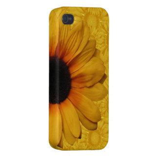 Beaux tournesols jaunes iPhone 4 case