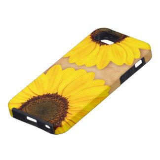 Beaux tournesols jaunes sur le vieux papier souill étuis iPhone 5