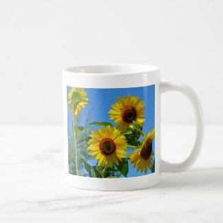 Beaux tournesols jaunes tasse