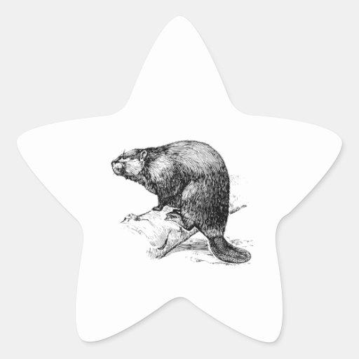 Beaver #1 sticker