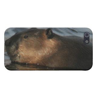 Beaver 4/4s iPhone 5/5S case