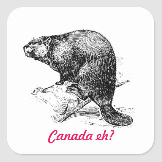 Beaver Canada eh?  Lighthouse Route Square Sticker