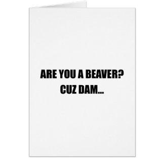 Beaver Cuz Dam Card
