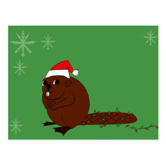 beaver in a santa hat postcard