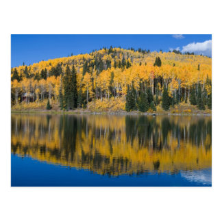 Beaver Lake in Autumn Postcard