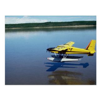 Beaver, landing on river postcard