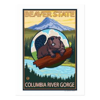 Beaver & Mt. Hood - Columbia River Gorge, OR Postcard