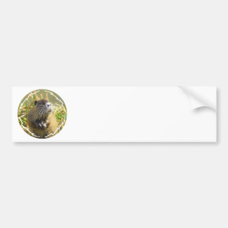 Beaver Photo Bumper Sticker