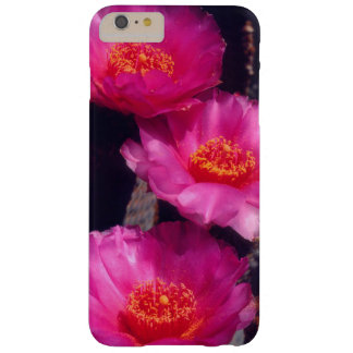 Beavertail Cactus Flowers 2 Barely There iPhone 6 Plus Case