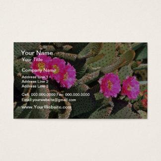 Beavertail Cactus flowers Business Card