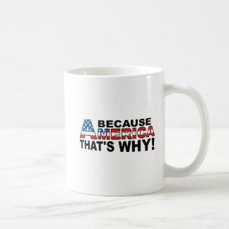 Because America Funny Mug