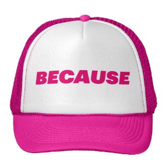 BECAUSE fun slogan trucker hat